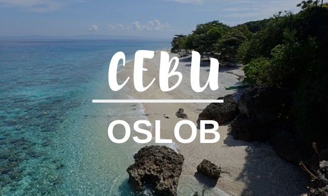cg academy oslob day tour